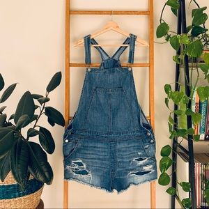American Eagle Outfitters Denim Overall Shorts